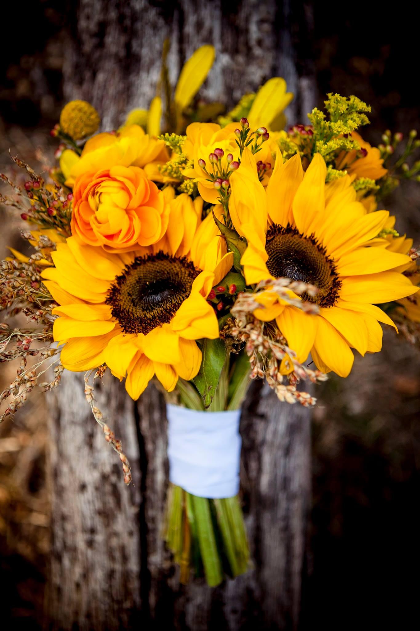 David and Kim's Outdoor Sunflower Wedding